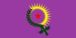 m-d-movimento-de-mulheres-do-curdistao-na-america-1.jpg